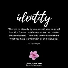 identity_INSTA