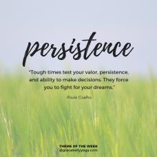 persistence_INSTA
